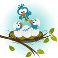 Bird feeding babies in nest Royalty Free Stock Photo