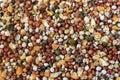 Bird food, birdseed, sunflower, millet seeds background texture Royalty Free Stock Photo