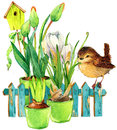 Bird and Garden flowers background. Royalty Free Stock Photo