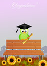 Bird graduate on bench illustration of with parchment Stock Images