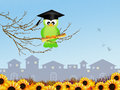 Bird graduate illustration of with parchment Royalty Free Stock Photos