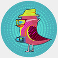 Bird hipster stylish wearing a hat and a camera Royalty Free Stock Photos