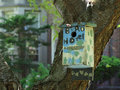 The bird hotel colorful birdhouse hangs from tree trunk horizontal Stock Images