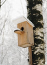 Bird house Royalty Free Stock Photo