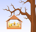 Bird house birds hung branch illustration Stock Photos