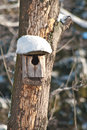 Bird house booth breeding on tree Stock Photo