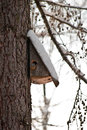 Bird house booth breeding on tree Royalty Free Stock Photo