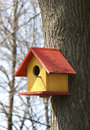 Bird house colored on a tree Royalty Free Stock Image