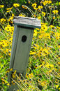 Bird house in field of flowers a rustic wooden a daisy like yellow vertical format Royalty Free Stock Image