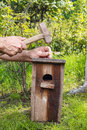 Bird house in the garden making of Royalty Free Stock Images