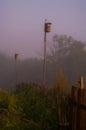Bird house high above the earth in the fog Stock Photo