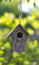 Bird house in summer sunshine green leaves a or box or spring with natural background Stock Photos