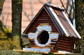 Bird house in a tree Royalty Free Stock Image