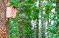 Bird house tree on trunk Royalty Free Stock Photography