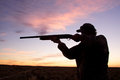 A bird hunter silhoutted against a dramatic sunrise with shotgun in shooting position Stock Photo