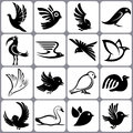 Bird icons set illutration Royalty Free Stock Photos