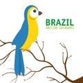 Bird macaw blue and yellow brazil
