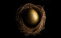 Bird nest with golden egg on black background Royalty Free Stock Photography