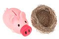 Bird nest and piggy bank Stock Photos