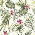 Bird of paradise flowers tropical palm leaves beige background