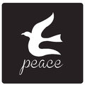 Bird peace a white silhouette of a and some text Stock Image