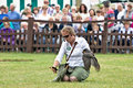 Bird of prey handler brockenhurst uk july the head pulls in her peregrine falcon at the end a public display flight at the new Stock Photos