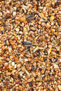 Bird seed mix Royalty Free Stock Photo