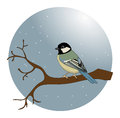 Bird in a snow on tree branch Royalty Free Stock Photo