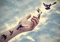 Bird tattoos come to life