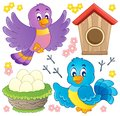 Bird theme image  Stock Image