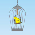 Birdcage bird hanging with yellow inside Royalty Free Stock Photography