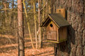 Birdhouse in forest Stock Images