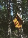 The birdhouse in a forest