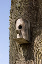Birdhouse hanging on tree Royalty Free Stock Photography