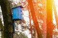 Birdhouse Hanging On Tree.