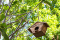 Birdhouse a nestled on tree Royalty Free Stock Images