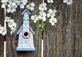 Birdhouse on old  wooden fence with dogwoods Stock Photography