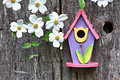 Birdhouse on old  wooden fence with dogwoods Stock Photos