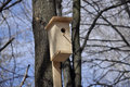 Birdhouse in the park one day in april on background of blue spring sky Stock Photography