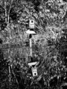 Birdhouse Reflection in Lake B&W Royalty Free Stock Photo