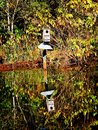 Birdhouse Reflection in Lake Royalty Free Stock Photo