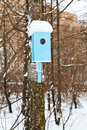 Birdhouse with snowdrift in urban park on tree trunk winter Royalty Free Stock Photo