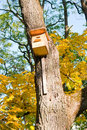 Birdhouse on a tree wooden Stock Photos