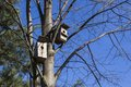 Birdhouses await their owners. Royalty Free Stock Photo