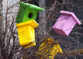 Birdhouses colored on the tree handmade nesting box Stock Photos