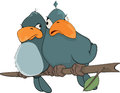Birdies cartoon two birds sitting on a branch Royalty Free Stock Images