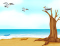 Birds at the beach illustration of Royalty Free Stock Photography