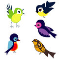 Birds bird on white background vector Stock Image