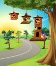 Birds in birdhouse on tree