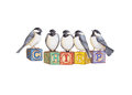 Birds chirp chickadees on alphabet blocks that spell out send a positive message with a bit of subtle humor Royalty Free Stock Photography